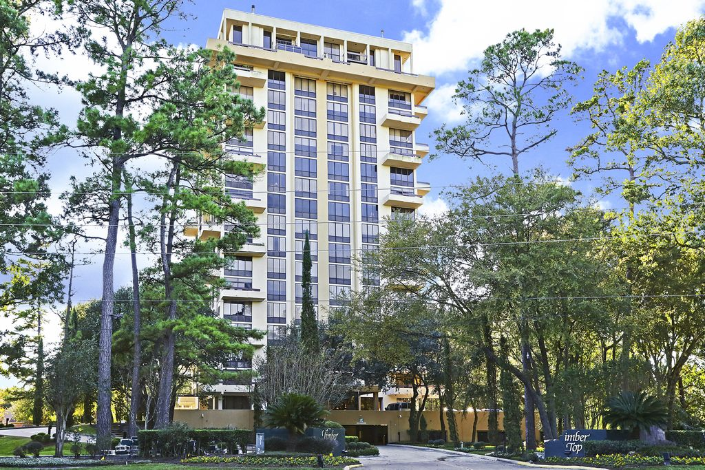 Timber Top at 14655  Champion Forest, Houston, TX 77069