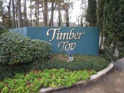 Timber Top